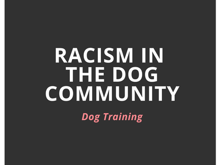 Racism in the Dog Community: Dog Training Community