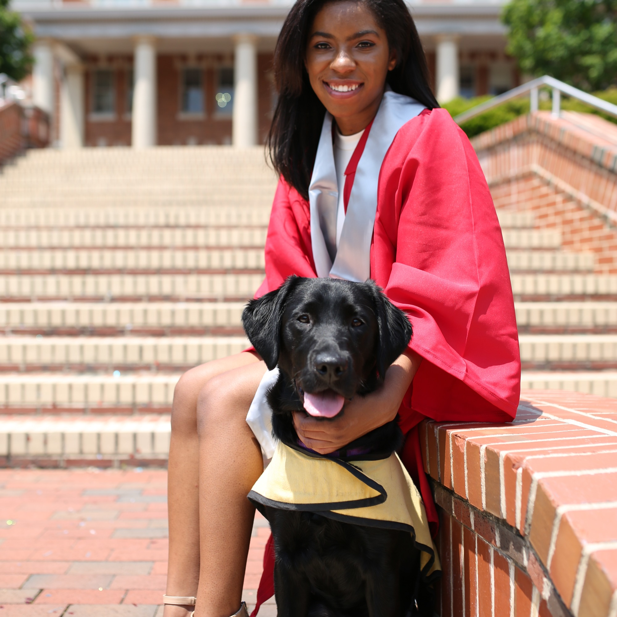 Erin sits on a ledge in her red graduation regalia with a black lab in a yellow vest sitting in fron