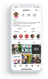 A phone with Pawsible's Instagram page.