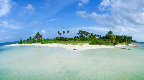 Owens Island