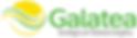 LogoGalatea_Horizontal_2x.png