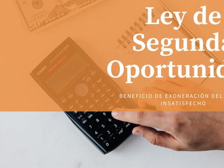 Ley de Segunda Oportunidad (BEPI)