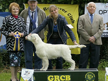 GRCB Junior & veteran show