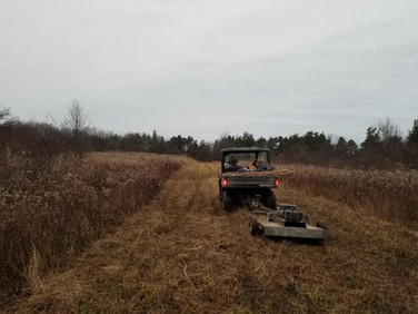 New trail section on Dutch Rd.