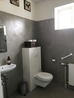 WC and Shower room