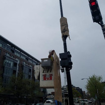Installation of New Traffic Signal / Pedestrain Signal Heads