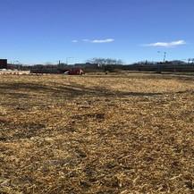 Soil Stabilization, East Approach Gore Area.