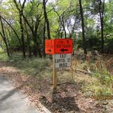 Installed Pedestrian Detour Signs