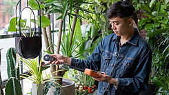how-to-measure-light-for-plants_1024x102