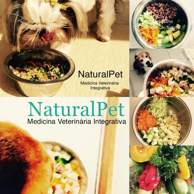 Alimentação Natural!!👩🏼⚕️🌿🐾