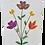 Thumbnail: Wildflower Blooms