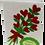 Thumbnail: Bouquet Cards