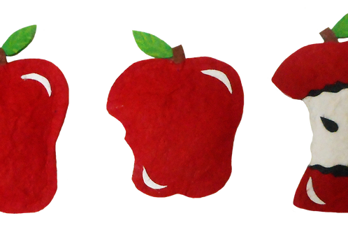 Apple Fridge Magnets - pack of three
