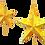 Thumbnail: Christmas Folding Star