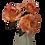 Thumbnail: Boxed Set of Three Roses