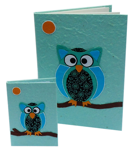 Wisdom of the Owl