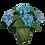 Thumbnail: Hydrangeas