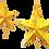 Thumbnail: Christmas Star