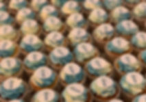 honeypot medical logo cupcakes.jpg
