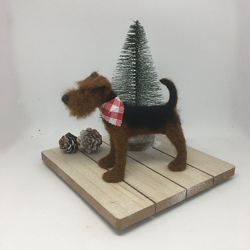 Watering the tree /Welsh/Airedale