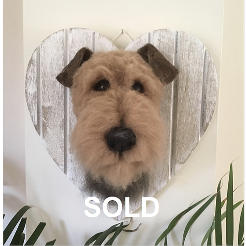 Life size Welsh terrier head mounted on white washed wooden heart