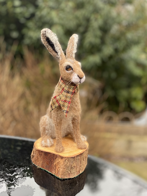 A Hare called Horace