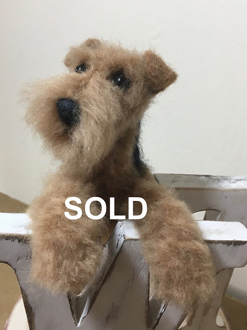 Welsh terrier look out post !