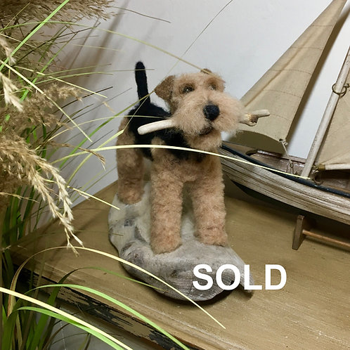 Welsh terrier mounted on driftwood base