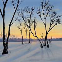 Winter Sunrise by Mark Hird-Rutter.jpg