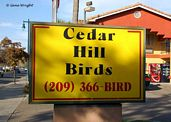 Cedar Hill Bird Sign