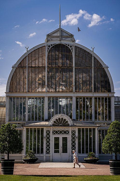 Greenhouse granny