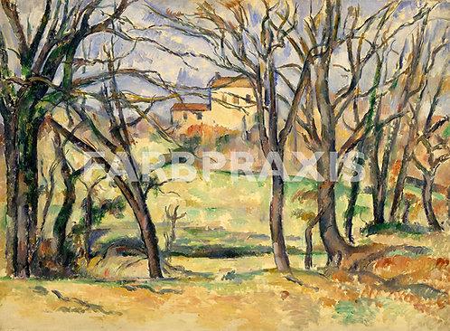 Paul Cezanne | Trees and Houses Near the Jas de Bouffan
