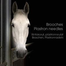 plastron_needle_with_horsehair.jpg