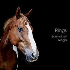 horsehairring Ringmitpferdehaar.jpg