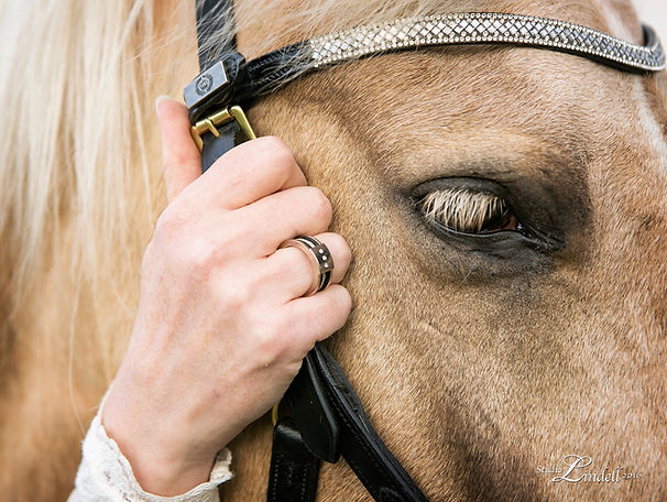 high end horsehair jewellery