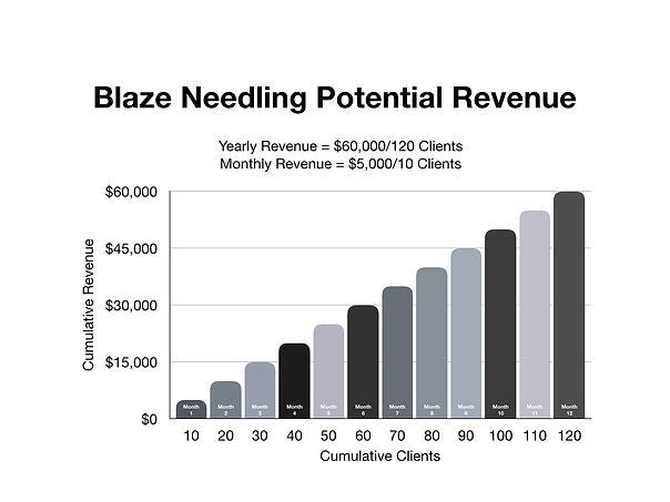 erica blaze charts.002.jpeg