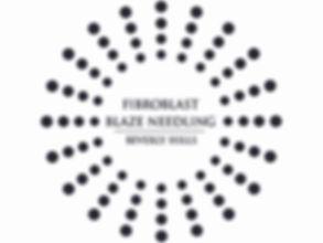 FBN_LOGO_BLACK (1).jpg