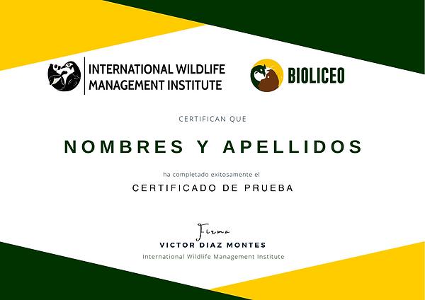 Certificado Ejemplo.png