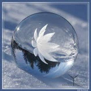Esfera de Loto