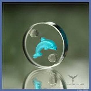Medallón del Delfín para animales