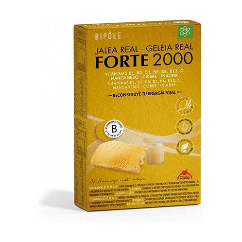 Jalea Real Forte 2000 ( 20 ampollas)