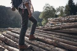 maderas secas