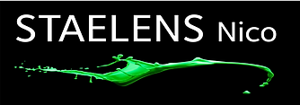 logo_nicostaelens.png