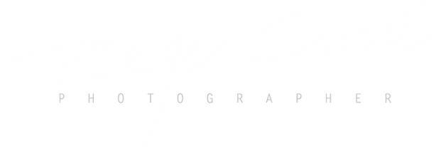 Logo-Zeger-transparant-grey.png