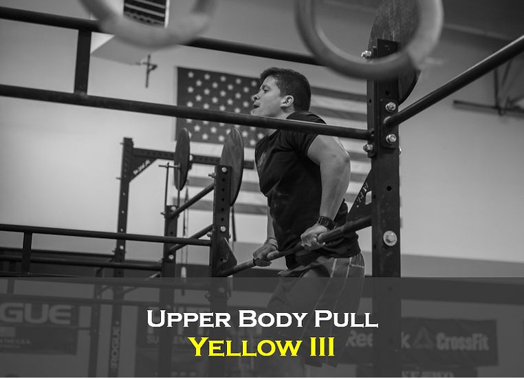 Upper Body Pull (Male) Yellow III