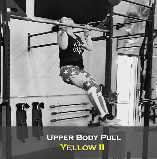 Upper Body Pull Yellow II