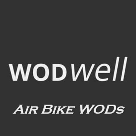 WODWell Air Bike WODs