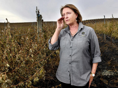 Australian Wineries Affected by Bushfires
