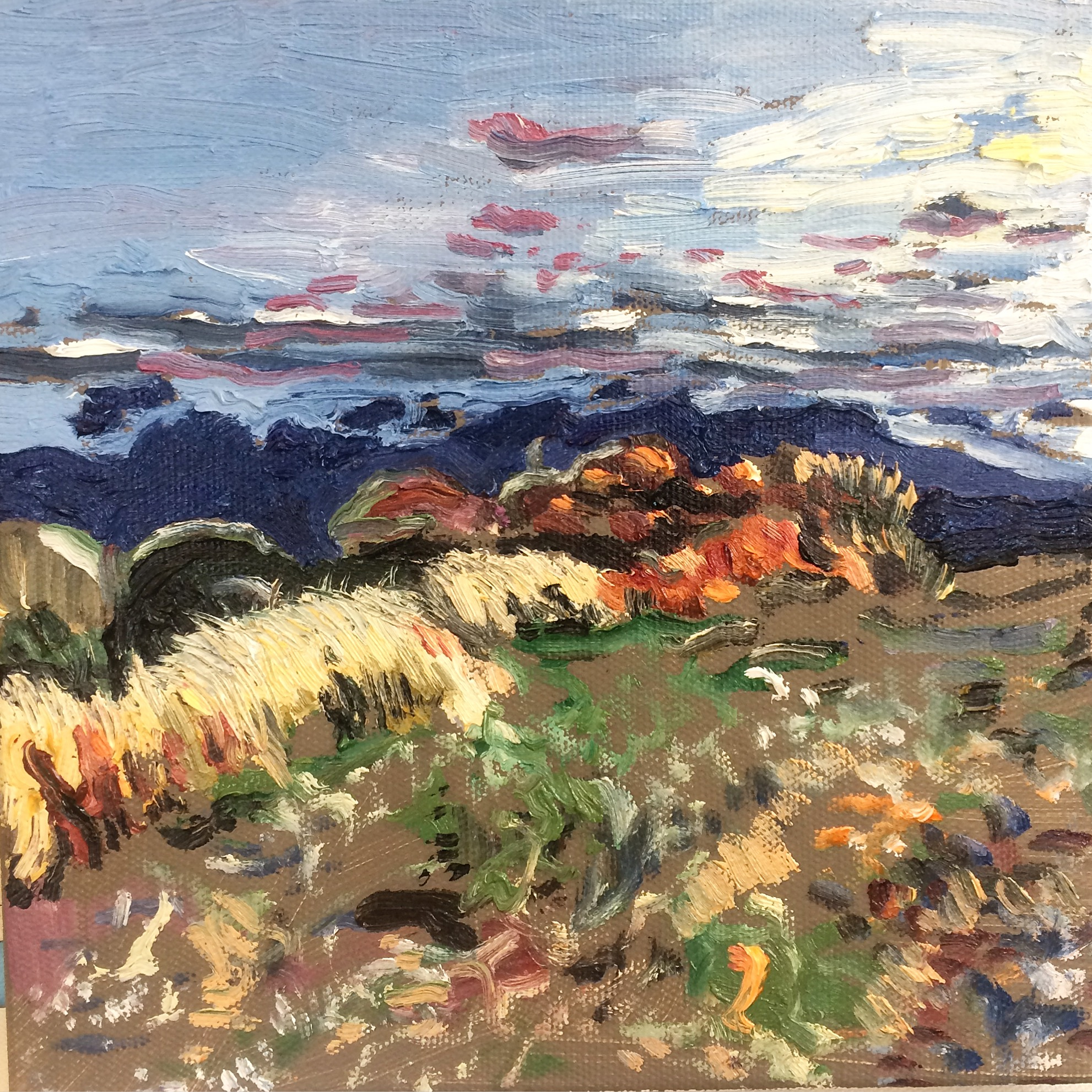 King's Tableland Sunset Study, 2016