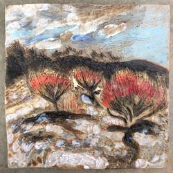 Burnt Casuarinas Flat Rock, 2016